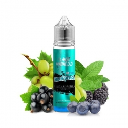 Lichid Blueberg Flavor Madness 40ml 0mg
