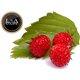 Lichid Strawberry Forest (Strawberry) L&A Vape 10ml 18mg