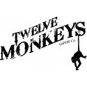 Twelve Monkeys V2
